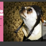 Imagen de la home de la web de Doggie's Turo